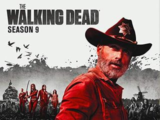 The Walking Dead – Season 9 (streaming)